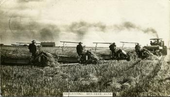 Red Deer Archives, DA270; Harvesting on Bower Farm, ca. 1912