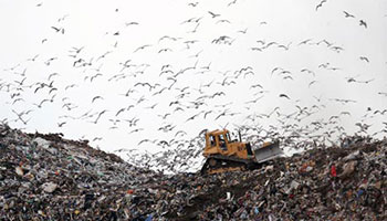 tractor moving waste in landfill