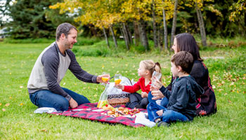 photo of a family enjoying a picnic