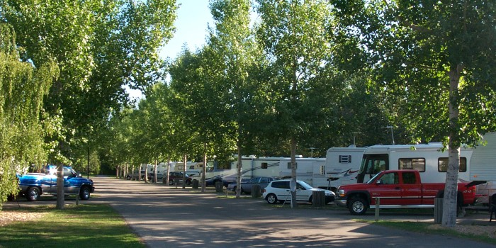 View of the Lion's Campground filled with campers.