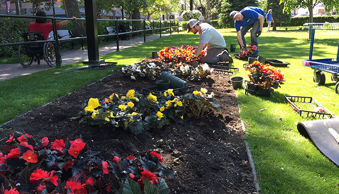 picture of Employees planting flowers in City Hall Park