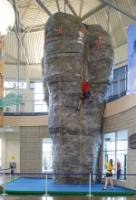 Collicutt Centre climbing wall -Mr Big-2